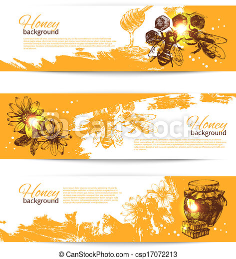 Set of honey banners with hand drawn sketch illustrations - csp17072213