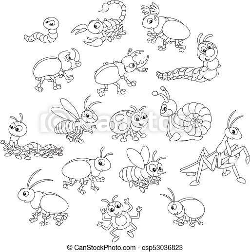 Set of insects - csp53036823