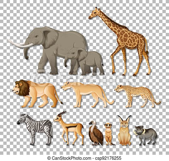 Set of isolated wild african animals on transparent background - csp92176255