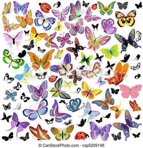 set of ladybug and butterfly - csp5209148