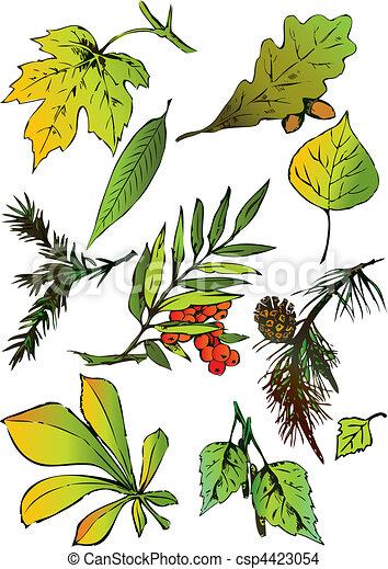 Set of leaves. - csp4423054