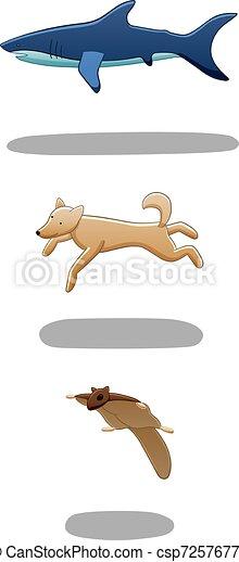 Set of levitating shark, dog and flying squirrel - csp72576770