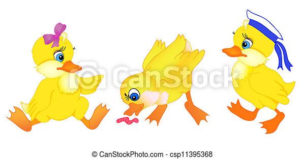 set of little duck cartoon - csp11395368