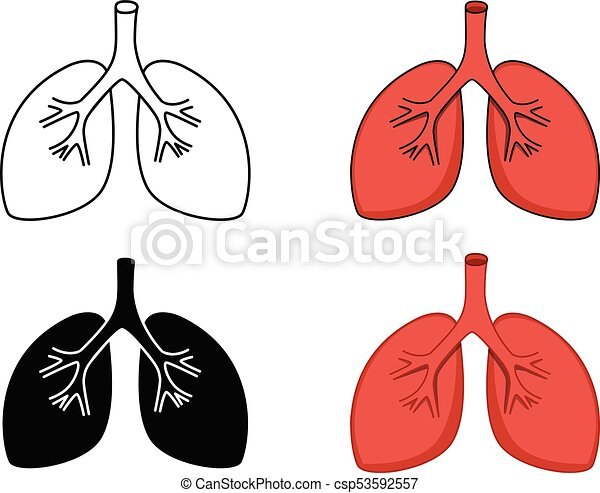 Set of lung icon, vector art - csp53592557