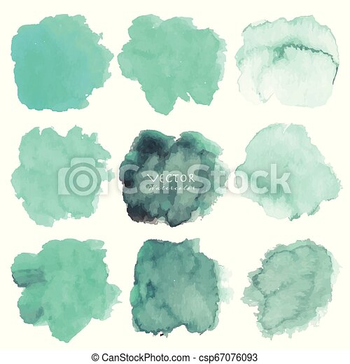 Set of mint watercolor on white background, Brush stroke watercolor, Vector illustration. - csp67076093