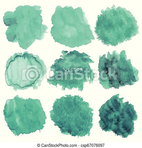 Set of mint watercolor on white background, Brush stroke watercolor, Vector illustration. - csp67076097