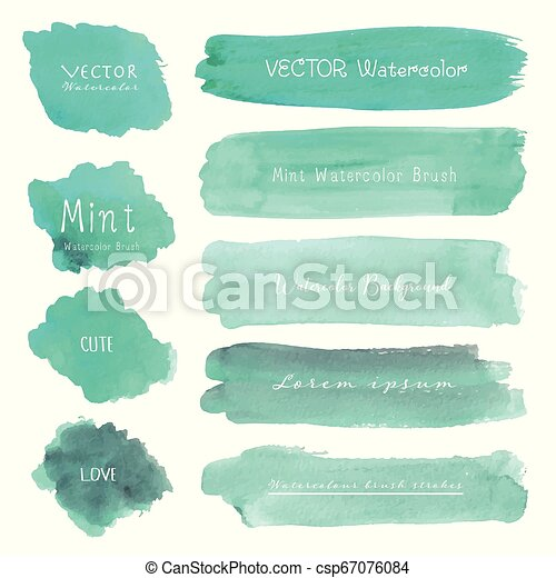 Set of mint watercolor on white background, Brush stroke watercolor, Vector illustration. - csp67076084