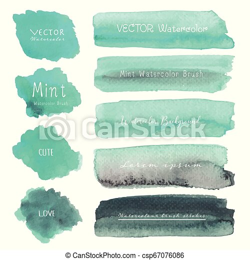 Set of mint watercolor on white background, Brush stroke watercolor, Vector illustration. - csp67076086