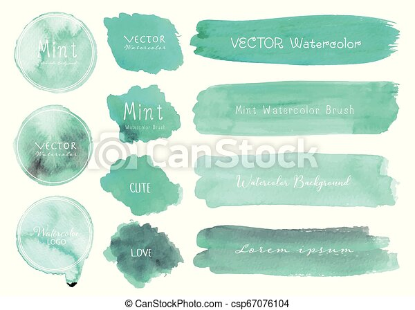 Set of mint watercolor on white background, Brush stroke watercolor, Vector illustration. - csp67076104