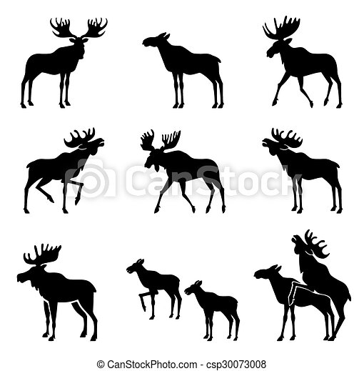 Set of Moose Silhouettes. - csp30073008