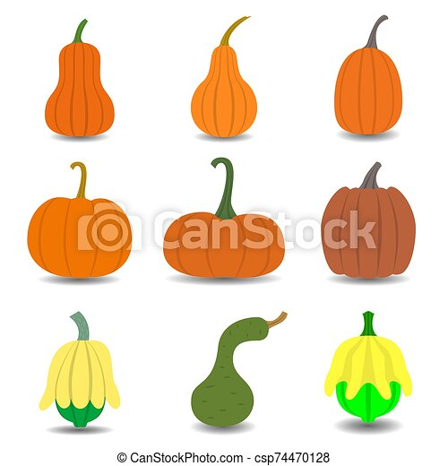 Set of pumpkin icon isolated on white background. - csp74470128