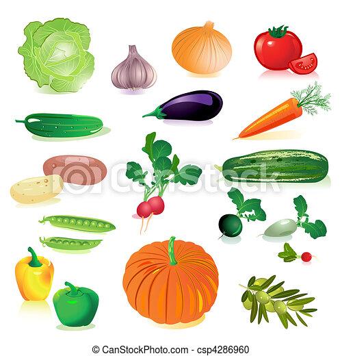 set of raw vegetables - csp4286960