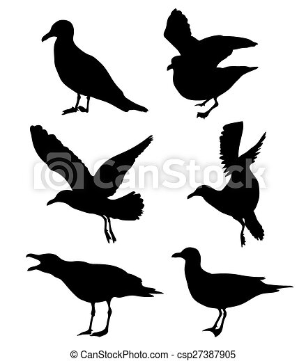 set of seagulls silhouettes - csp27387905