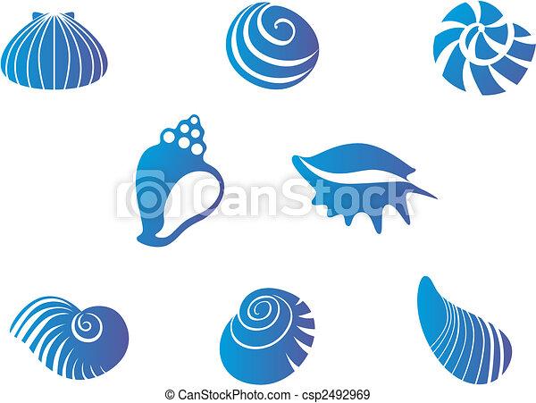 Set of seashells - csp2492969
