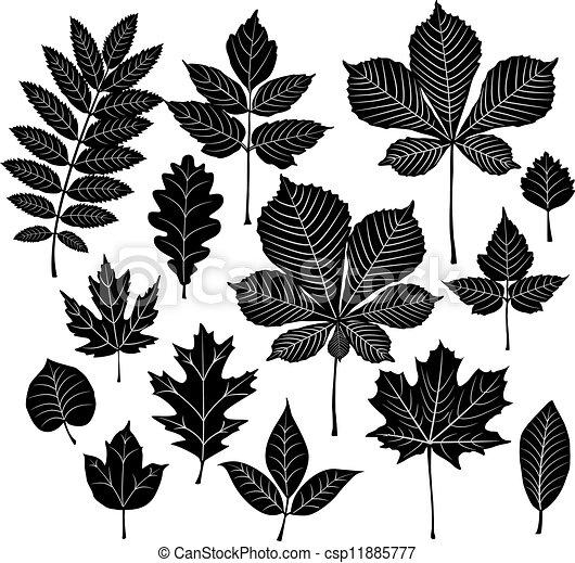 Set of silhouette leaf - csp11885777