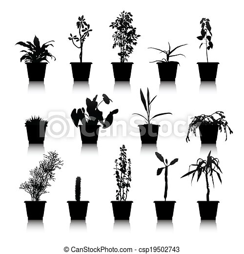 house plants drawing. set of silhouettes house plants csp19502743 drawing
