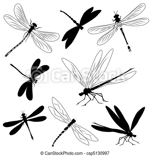 Set of silhouettes of dragonflies,  - csp5130997