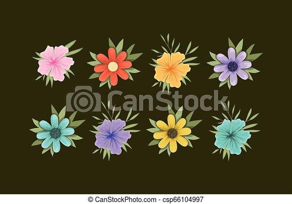 set of spring flowers - csp66104997