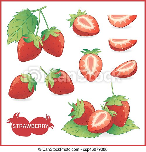 set of strawberry fruit illustration with leaf in slice half whole in vector format https www canstockphoto com set of strawberry fruit illustration 46079888 html