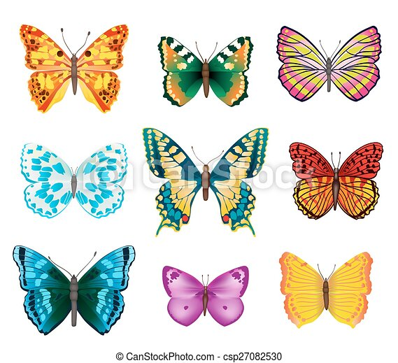 Set Of Various Colorful Butterflies With Open Wings