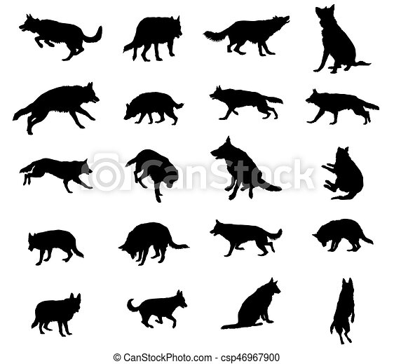 Set of vector dogs - csp46967900