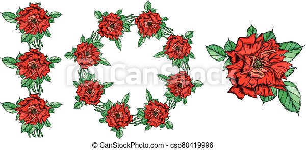 Set of vector floral arrangements with rose flowers. - csp80419996