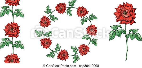 Set of vector floral arrangements with rose flowers. - csp80419998