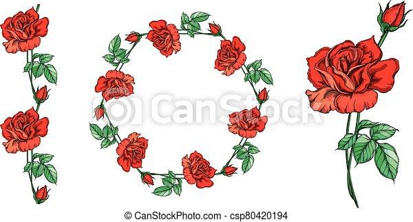 Set of vector floral arrangements with rose flowers. - csp80420194