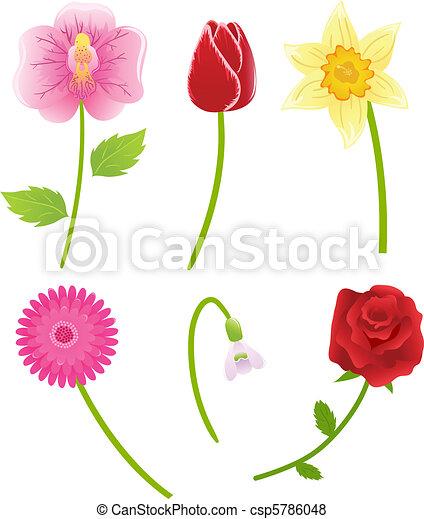 Set of vector flowers - csp5786048