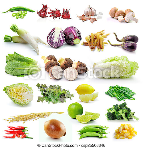 set of vegetable on white background - csp25508846