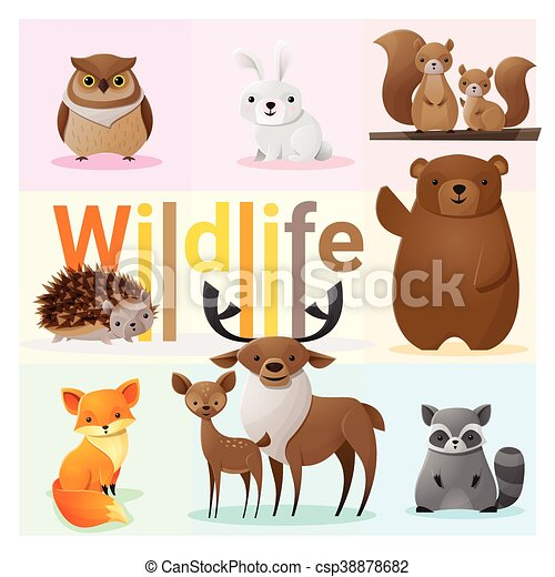 Set of Wild animals 2 - csp38878682