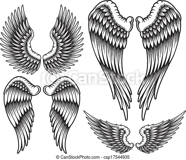 Set of Wings - csp17544935