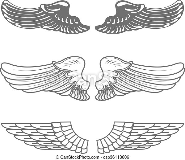 Set of wings isolated on white - csp36113606