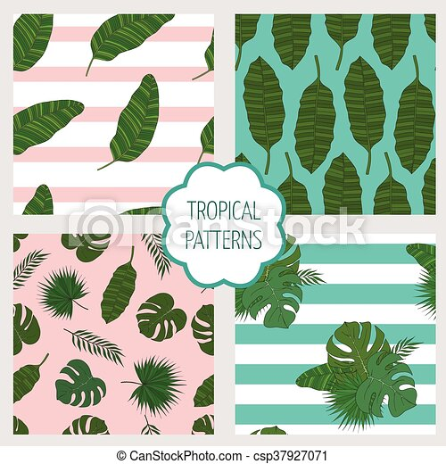 Set patterns. Leaves of the tropical palm trees. - csp37927071