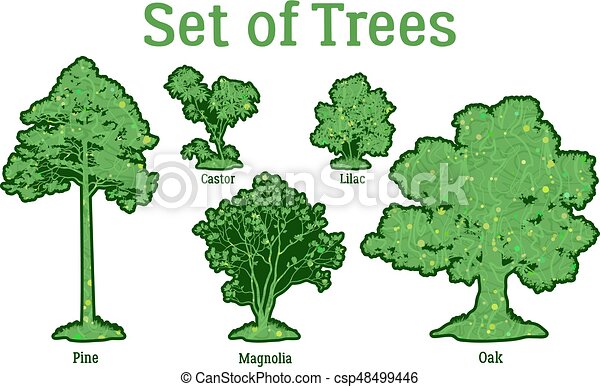 Set Plants, Trees and Bushes - csp48499446