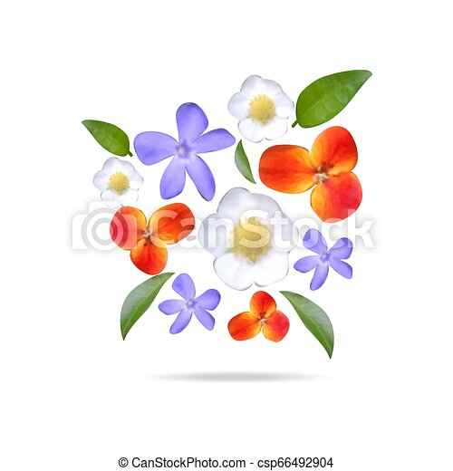 Set realistic flowers and leaves. Watercolor natural elements - csp66492904