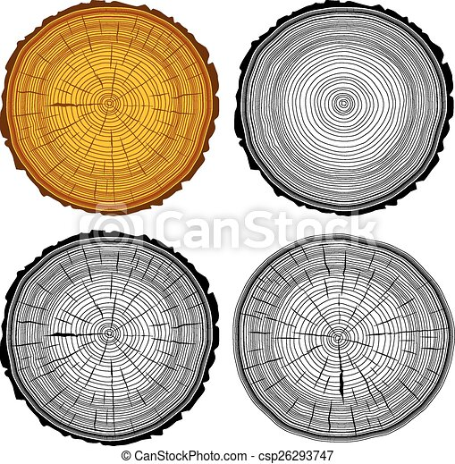 Set tree rings saw cut tree trunk background. Vector illustratio - csp26293747