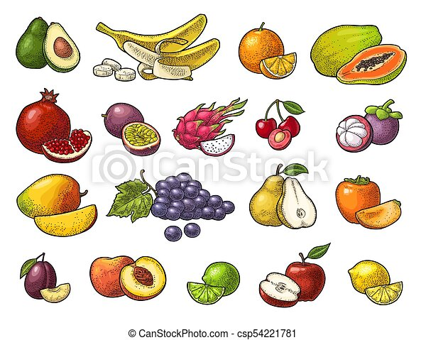 Set tropical fruits. Vector black vintage engraving isolated on white - csp54221781