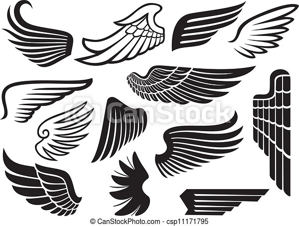 (set, vinger, samling, wings) - csp11171795