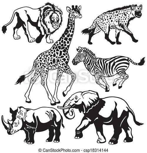 set with african animals - csp18314144
