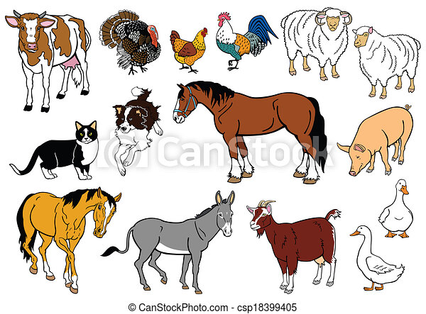 set with farm animals - csp18399405