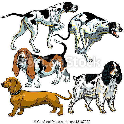 set with hunting dogs - csp18167992