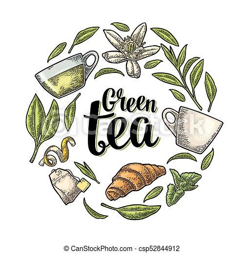 set with lettering green tea vector vintage engraving set with lettering green tea cup branch leaf flower lemon https www canstockphoto com set with lettering green tea vector 52844912 html