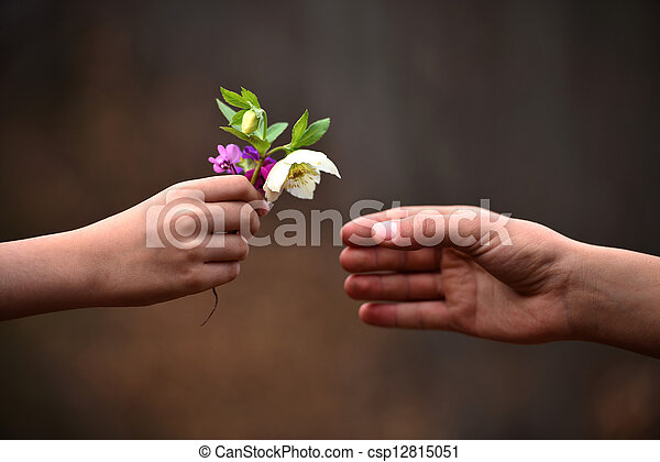 seu, criança, dar, pai, mão, flores - csp12815051