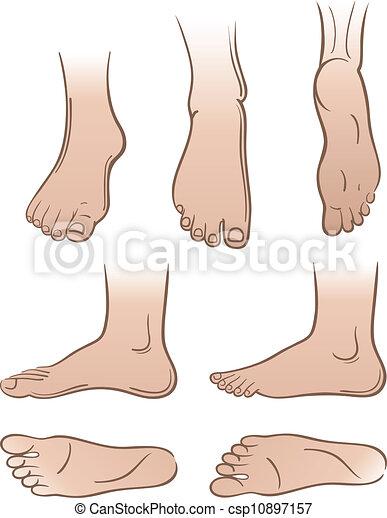 Seven man feet - csp10897157