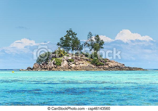 Seychelles Chauve Souris Mahe Seychelles