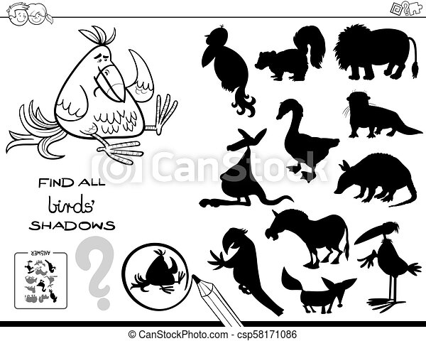 shadow game with birds color book - csp58171086