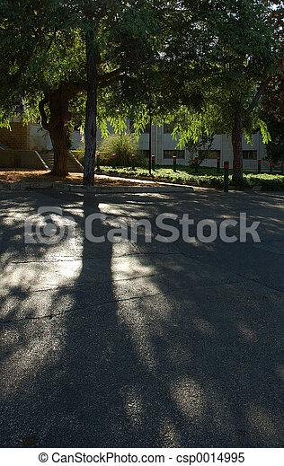 shadows - csp0014995