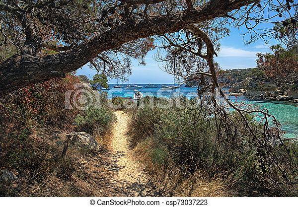 Shady path along the shore of the Bay, Mallorca, Spain - csp73037223