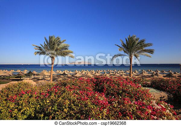 Sharm el Sheikh - csp19662368